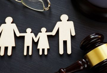 Non-Parent Custody Cases