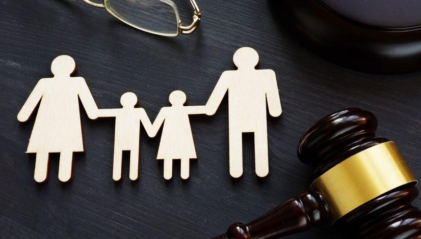 Non-Parent Custody Cases
